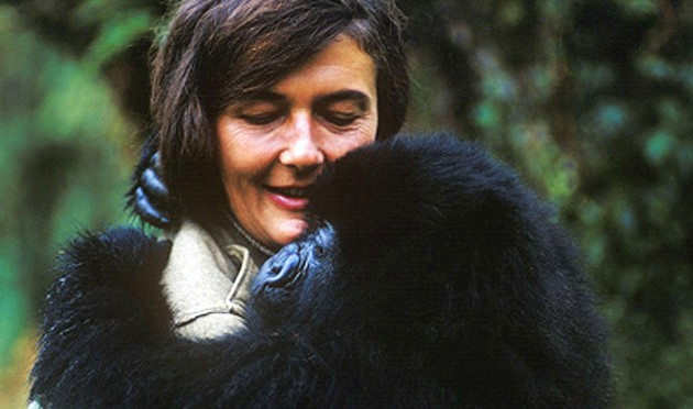 Remembering Dr. Dian Fossey, an Inspiration and Passionate Gorilla Advocate