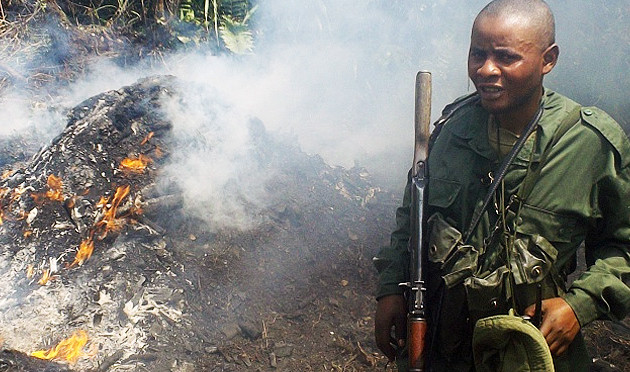 Virunga Field Report ~ Anti-Charcoal Patrol Results in Arrests