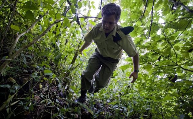 National Geographic Report ~ Warden Emmanuel de Merode, Wounded in Africa's Oldest National Park Had Enemies